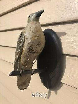 Antique Pennsylvania Carved Folk Art Northern Flicker Bird Decoy