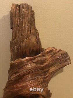 12 Gnome Wood Spirit Tree Main Carved Pine Knot Par Nc Artist J. D. Price