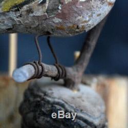 19ème Siècle Allemand Art Populaire Oiseaux Sculpté