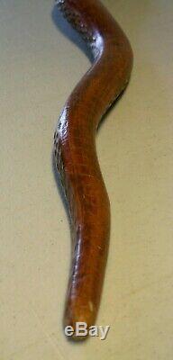 C. 1890 Folk Art Figural Serpent Sculpté Marche De Canne Bâton Rare