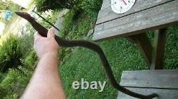 Grand Antique Primitive Folk Art Canne Walking Stick Carved Dragon Snake