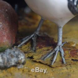 Milieu Du 20ème Siècle Sculpté À La Main Art Populaire Oiseaux Diorama Avec Authentification Stamp